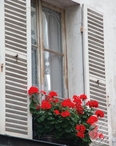 window_Etsy.jpg