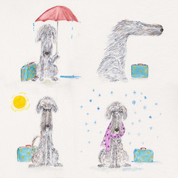 Jim travels in rain, sun and wind and snow