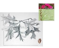 Flourish Denver Botanic Gardens