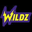 Wildz Casino.png