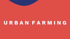 URBAN FARMING UNTUK KETAHANAN PANGAN