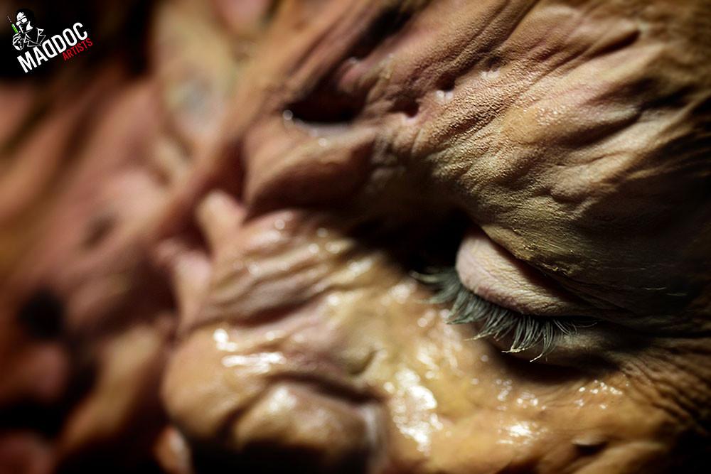 Le Maschere di Clara