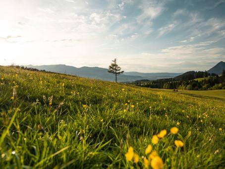Allgäu, neuer Camper, #vanlife