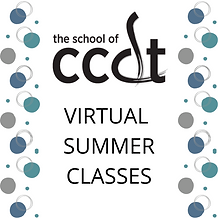 VIRTUAL SUMMER CLASSES.png