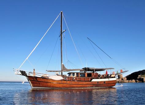 all boat shot2.jpg