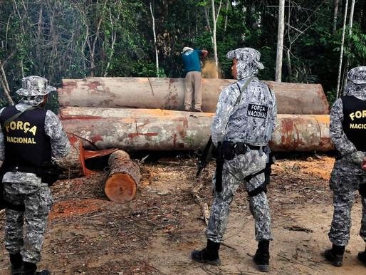 Governo Federal prorroga atuação da Força Nacional na Amazônia para combater crimes ambientais