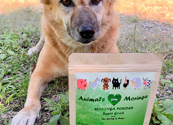 Animals Love Moringa - 100gm Pure Moringa Powder