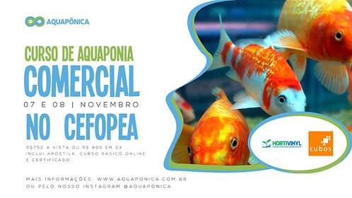 Curso Presencial de Aquaponia Comercial