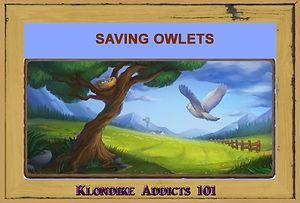 Saving Owlets