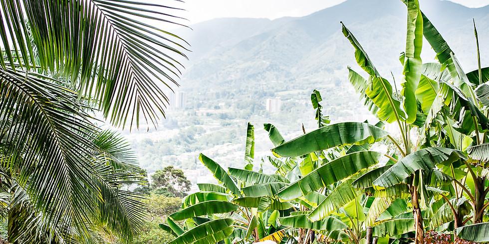 Colombia Trip Februrary