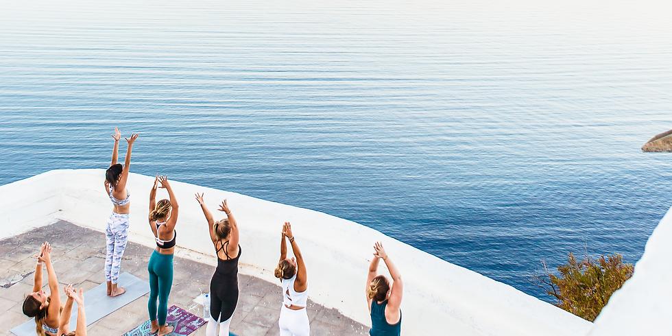 Building Stability In Your Vinyasa Flow Practice