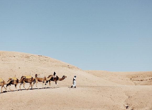 Morocco Deposit//April