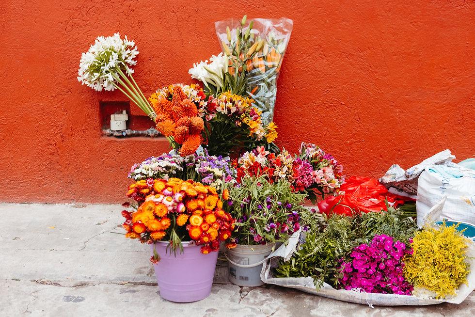 HereTravel.Oaxaca2021-142.jpg