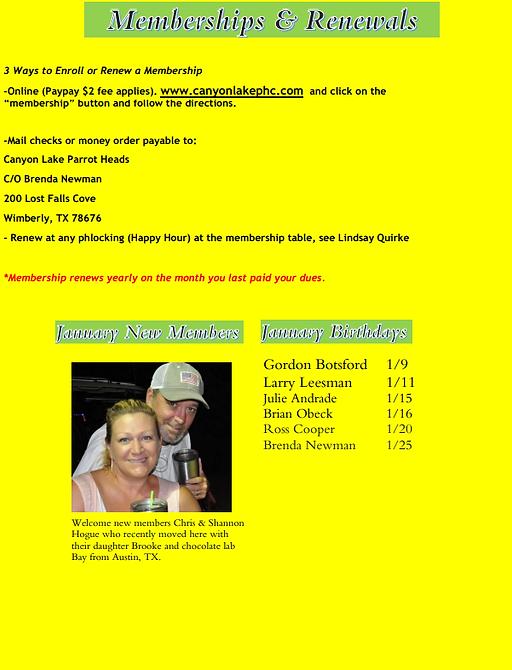 Newsletter Jan 2021 b.png