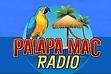 PalapaMac.png