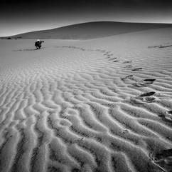 White Sand Dunes, Vietnam
