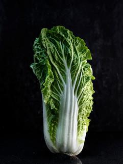 Vegetable-2000.jpg