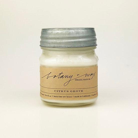 Citrus Grove 8oz Mason Jar Soy Candle