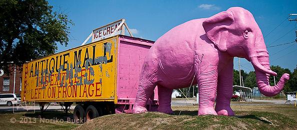 pink elephant_Noriko Buckles.jpg