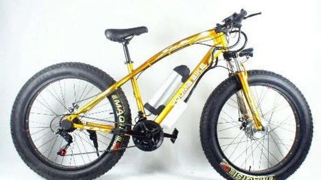 Newspeed Gold Electric Bike