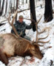 AZ-Elk-HarveyBlodgett - Copy.JPG