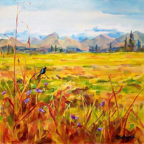 Canvas Print - Rocky Mountain Harvest