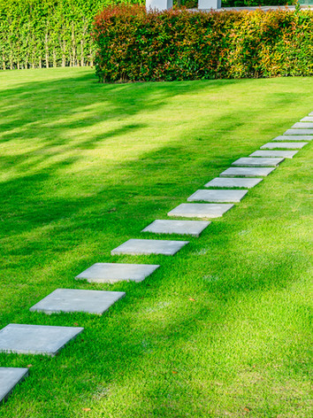 lawn care pic 2.jpg