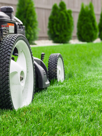lawn care pic 1.jpg