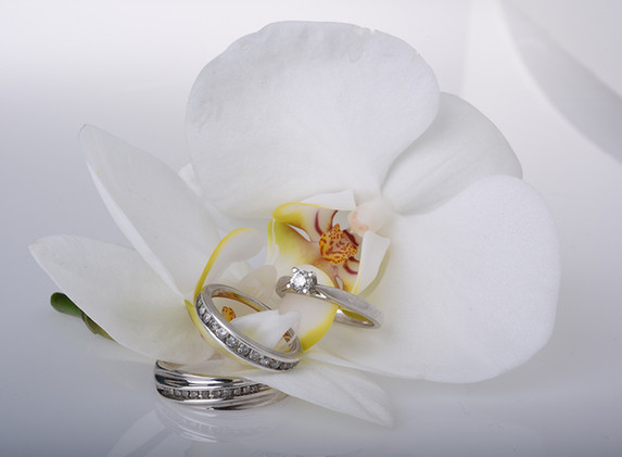 Silver Rings Starbound Photography