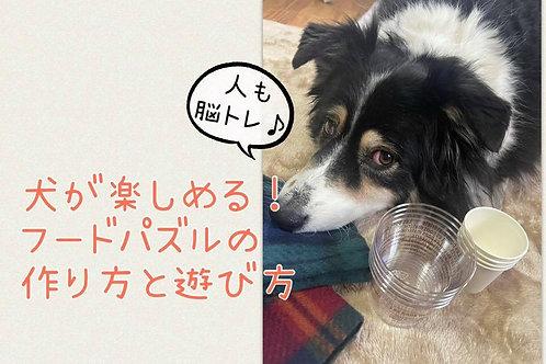 ◆犬が楽しめる!フードパズルの作り方と遊び方◆