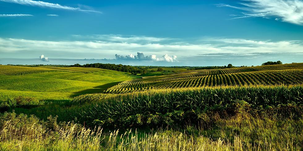 Soil Health Smorgasbord
