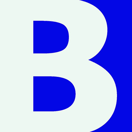 BLISK Corp - Logo 1.jpg