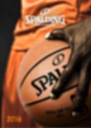 Spalding Teamwear 2018_edited.jpg