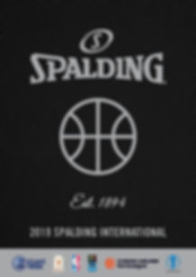 BALLS CATALOGUE SPALDING-page-001_edited