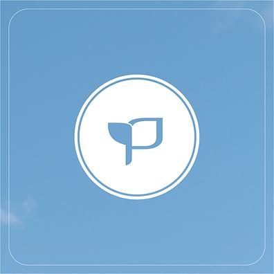 peacebuilding logo design elements-32.pn