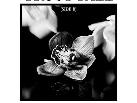 Incubus - Trust Fall (Side B) EP