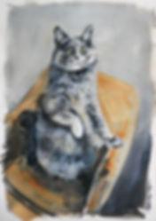 Belarus Cat s.jpg