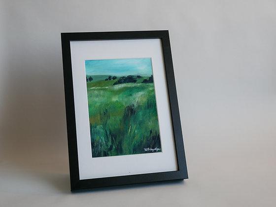 Field impressions 02