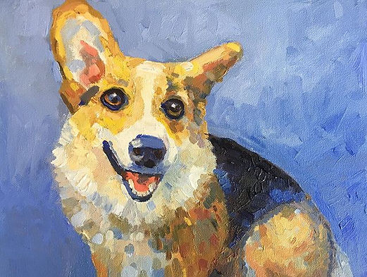 Pet portrait of my friend's corgi.jpg