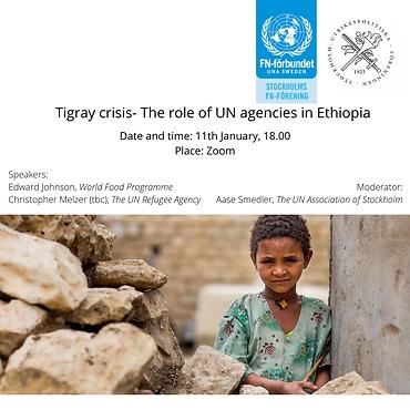 Tigray crisis- the roll of UN agencies i
