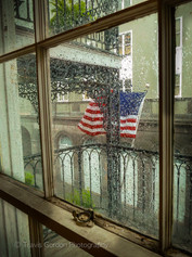 Waving in the Summer Rain