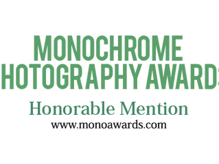 TRAVIS GORDON WAS AWARDED HONORABLE MENTION IN THE MONOCHROME AWARDS 2017 COMPETITION