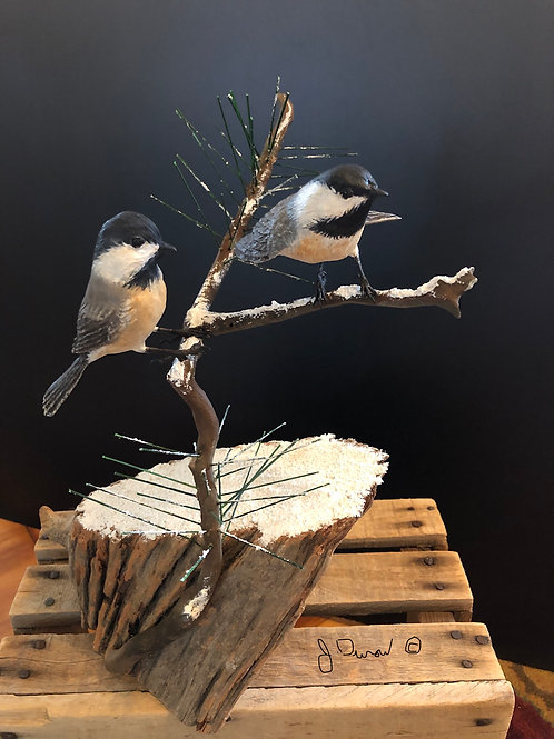 """Michigan Morning"" Black Capped Chickadees"