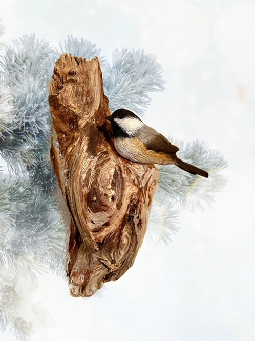 Black Capped Chickadee- Wall Carving