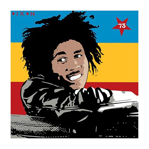 'Bob Marley' Limited Edition Pop Print
