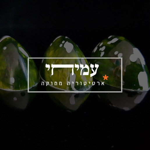Amihay_for website2.jpg