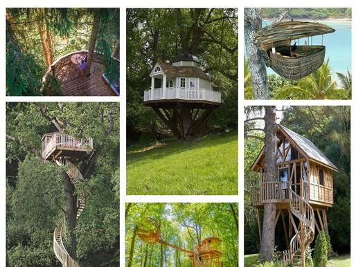 Les cabanes perchées dans les arbres, réveillent votre âme d'enfant