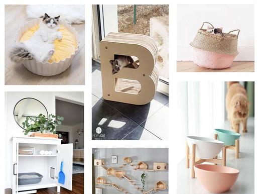 Le Chat gâté et la décoration