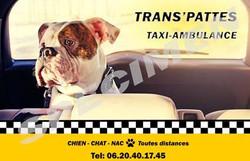 Trans'Pattes