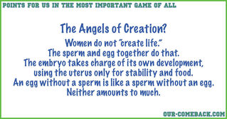 Gestation Is Not Creation